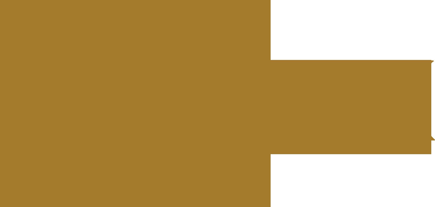 LifeSpa